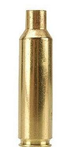 Vainas calibre 300 W.S.Mg. ( 50 u. )-0